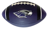 Nike Purple Football with Mascot and Nike Swoosh