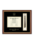 Tassel Edition Diploma Frame in Newport with Black/Gold mats