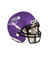 Spirit Products Schutt Mini Helmet Warhawks