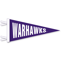 Collegiate Pacific 4x9 Mini Warhawks Pennant